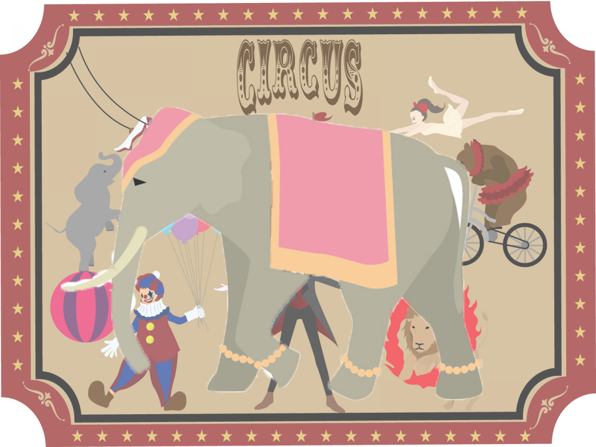 Article 229 From the ALUMNI Editing Room,  The Elephant in the Circus